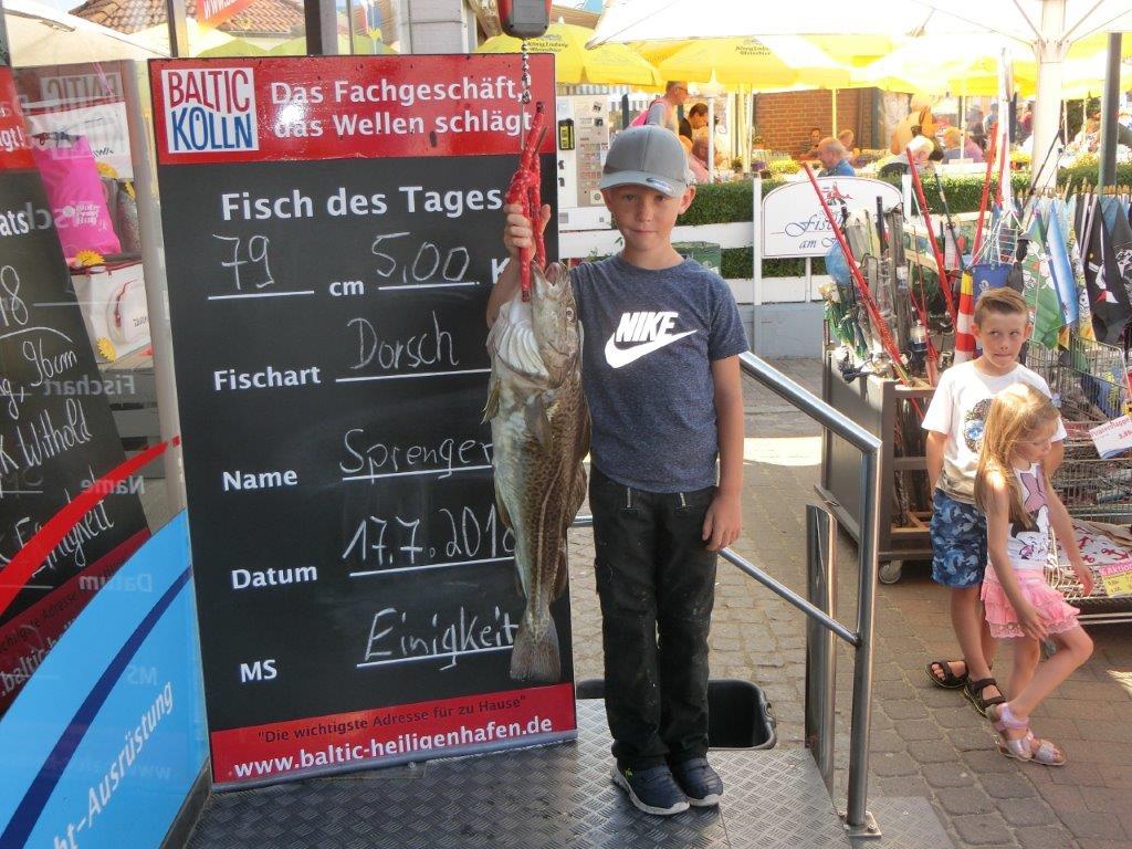 Heiligenhafen singles